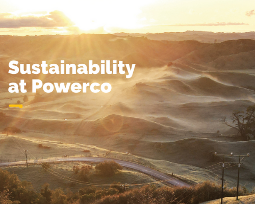 Sustainability at Powerco