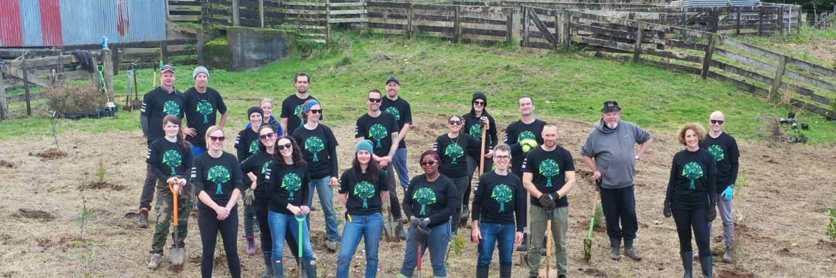 A team of volunteers headed out to Omoana in Eltham to plant 2500 native trees as part of our Replant for Tomorrow initiative